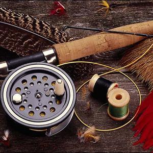 Охотничьи и рыболовные магазины Куеды